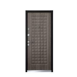 Металлическая дверь Area