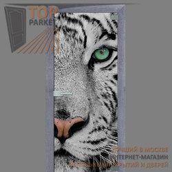 Стеклянная дверь Bella Cosa Animal