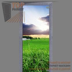 Стеклянная дверь Bella Cosa Nature
