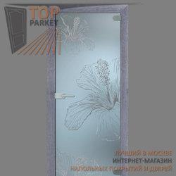 Стеклянная дверь Bella Cosa Герда2