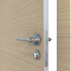 Межкомнатная дверь Дверная Линия ДГ-500 Неаполь