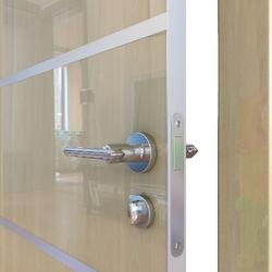 Межкомнатная дверь Дверная Линия ДГ-505 Анегри светлый глянец