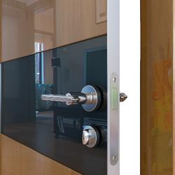 Межкомнатная дверь Дверная Линия ДО-501 Анегри тёмный стекло черное