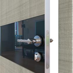 Межкомнатная дверь Дверная Линия ДО 501  Дуб серый,стекло черное