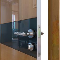 Межкомнатная дверь Дверная Линия ДО-509 Анегри тёмный стекло чёрное
