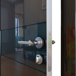 Межкомнатная дверь Дверная Линия ДО-509 Венге глянец стекло чёрное