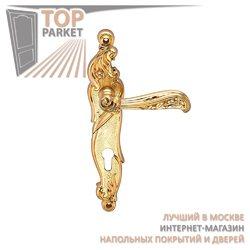 Ручка дверная на пластине Rizo Матовое золото