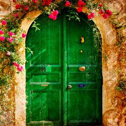 Донатор. Дверь 38