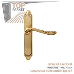 Ручка дверная на пластине Daisy 285/158 Полированная латунь