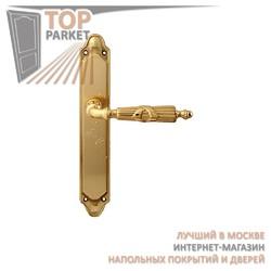 Ручка дверная на пластине Praga 282/158 Полированная латунь