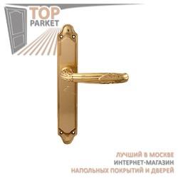 Ручка дверная на пластине Roma 281/158 Полированная латунь
